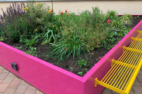 garden for your mental health ireland